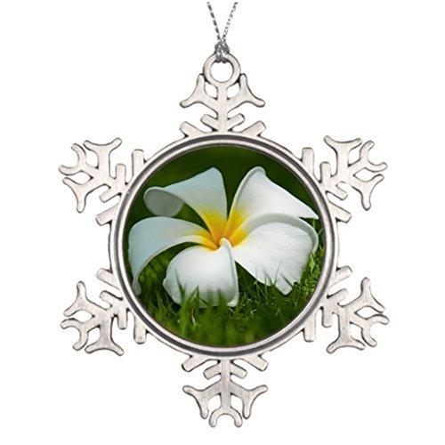 VinMea Snowflake Metal Ornament Ideas for Decorating Christmas Trees Beautiful Flowers Close-Up - Snowflake Ornaments Canada