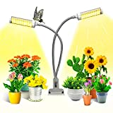 KagoLing Lampe de Plante, Lampe de Croissance pour Plantes 100 Lampes à LED Lampe de Croissance à Spectre Complet réglable sur 5 Niveaux avec minuterie Automatique / 3H / 6H / 12H