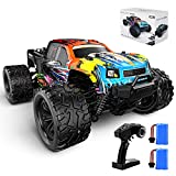Bluejay RC Cars, 1:18 Scale Off-Road Monster Truck, 35KM/H High-Speed 4WD Remote Control Car with 2 Rechargeable Batteries, 2.4GHz Hobby RC Toy Truck, Gifts for Boys, Kids & Adults