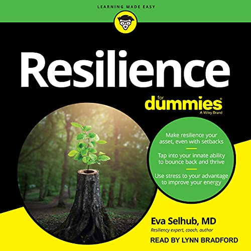 Resilience for Dummies cover art