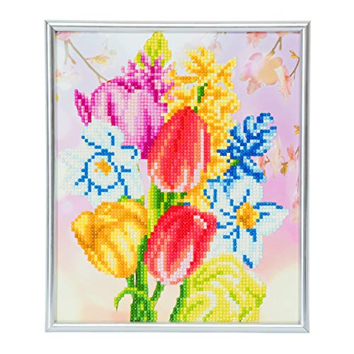 Crystal Art CAM-9 Picture Kits with Silver Frame, Multicolor