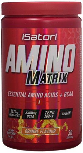 ISATORI AMINO MATRIX 214,5 GR Arancia