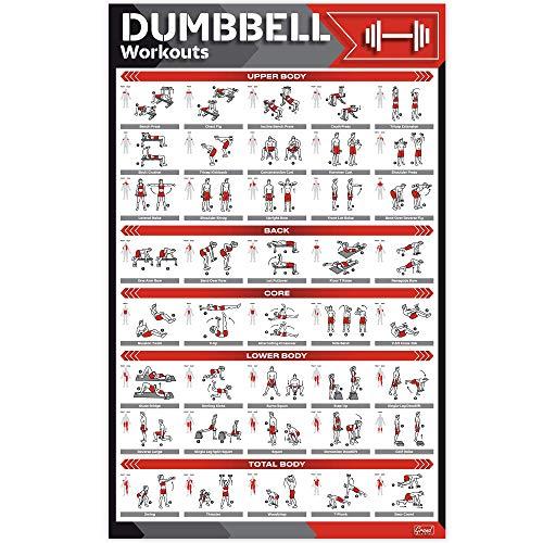 Laminiertes großes Hantel-Workout-Poster – perfektes Hantel-Übungsposter für Zuhause – Große Größe 43,2 x 68,6 cm Übungstabelle enthält 40 illustrierte Übungen für Hanteln