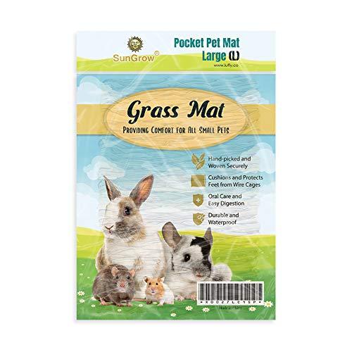"""SunGrow Rabbit Seagrass Mat, 7.8"""" x 11"""", Edible, Handmade,..."""