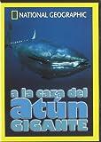 A La Caza Del Atun Gigante (Nat.Geo.) [DVD]