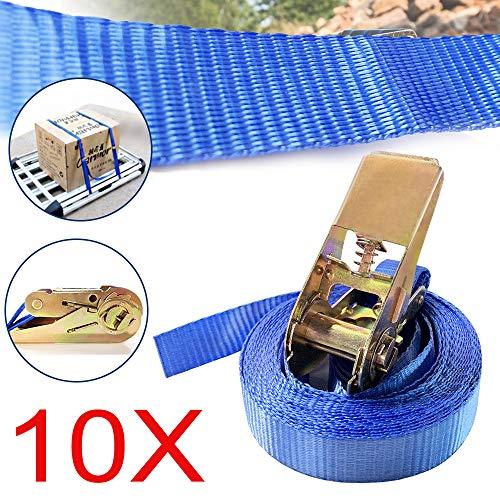 LZQ SafeStrap Spanngurte 6 Meter LKW spanngurte Ratsche Ratschengurte 800kg Kapazität (Blau ohne Haken 10 Stück/Set)