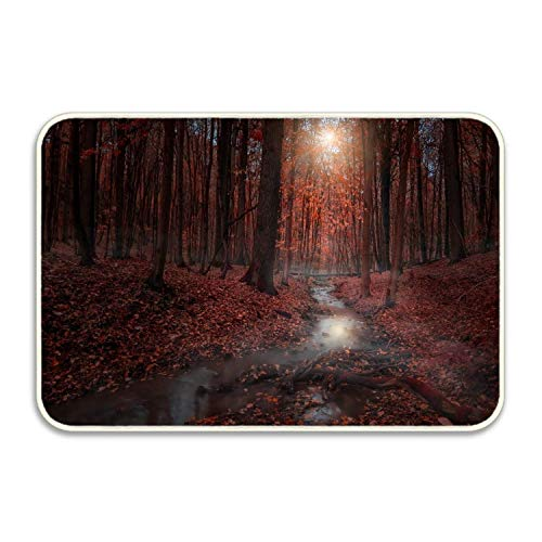 lijied Earth Fog Front Door Mat Large Outdoor Indoor Entrance Doormat Front Door mats Door mat