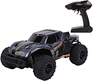 FLYZOE Remote Control Car 1: 16 Scale Buggy Vehicle 2.4Ghz Radio Controlled High Speed Off Road Vehicle 1602663