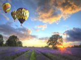 TLMYDD Rompecabezas De Jigsaw Para Niños 100 Piezas -3d Rompecabezas De Madera Para Adultos -childrens Rompecabezas - Rompecabezas De Pisos -ChildRens Jigsaw Puzzles Edad 5-7 -Lavender Hot Air Balloon