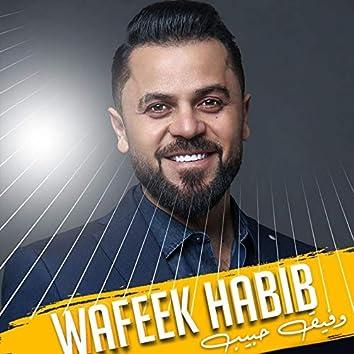 Wafeek Habib Mix