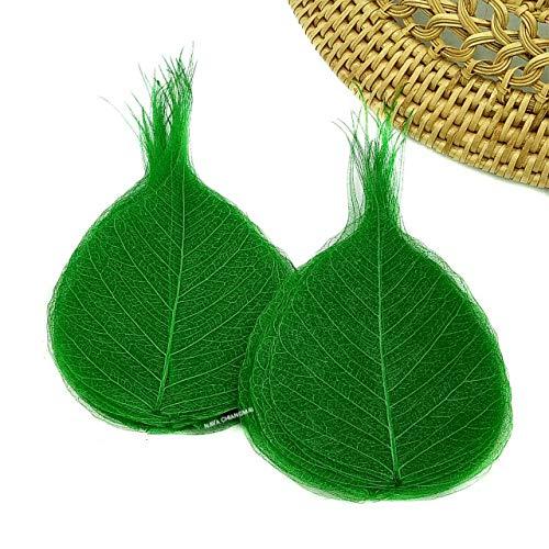 Nava Chiang Skelett natürlichen Pappel-Feige Blättern künstlichen Blättern Craft Karte Scrapbooking DIY Verzierung Dekoration Kunst Karten Hochzeit Geschenke Seasonal Geschenk grün