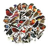BaiMENG Adesivo decorativo colorato con uccellino decorativo per telefono cellulare, casco, decorazione natalizia, impermeabile, 40 pezzi