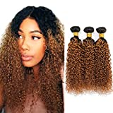 1B/#30 Ombre Brazilian Kinky Curly Hair 3 Bundles, 10A Dark Blonde Curly Weave Human Hair Extensions 100g, 100% Unprocessed Brazilian Hair Color Brown (10' 12' 14', 1B/30)