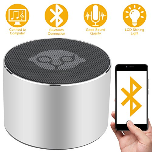 DLciwi Mini Bluetooth Speaker Portable Wireless Speakers with TF Card Slot for Computer Outdoor iPhone Samsung and Other Smartphone Silver
