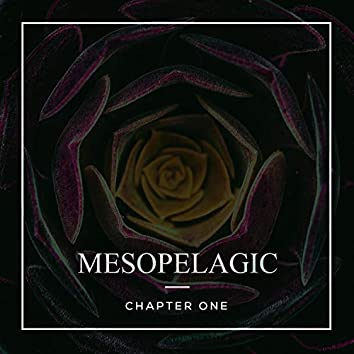Mesopelagic - Chapter One