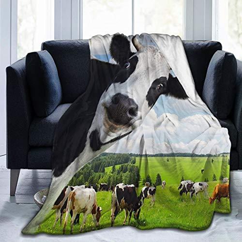 manta vaca fabricante Delerain