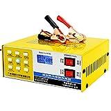 YTBLF Caricabatteria Auto 12V / 24V, Protezione Intelligente Riparazione degli impulsi, Adatto Batteria capacità 60AH-200AH, Batteria a Secco, Batteria Piombo, Batteria esente Manutenzione