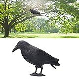 Señuelos de Cuervo Cuervo emplumado Negro Simulación de pie Estatua de Cuervo de plástico Accesorios de señuelo de Caza Decoración al Aire Libre y jardín