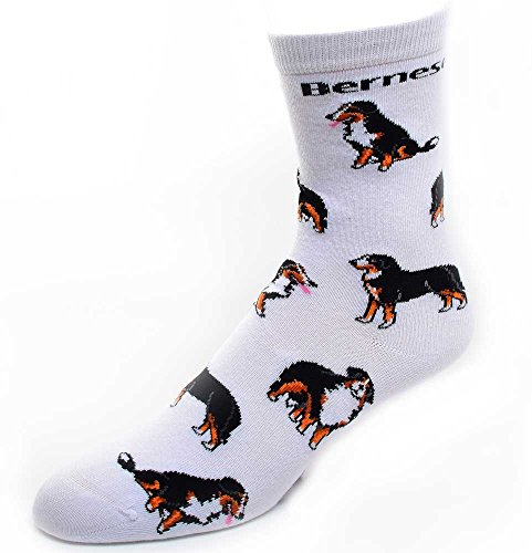 Bernese Mountain Dog Socks Poses 2,White,Medium