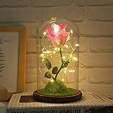 Décoration De La Chambre Romantique Fleur Immortelle Micro Paysage Rose Simulation Verre Abat-Jour Poudre