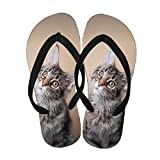 Men Beautify Silicone Use As Flip Flops Print With Pet Cat 2 Choose Design 4-5