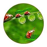 Cuero Posavasos (Set de 6) - Regalos Originales Decorativos para café, Cocina, Drink, Taza, Vino, Tazas, Juego de mesas Little Ladybug en el Paraguas en el Estanque