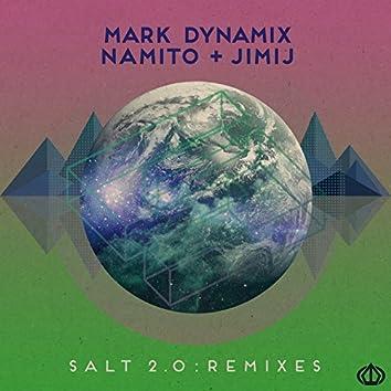 Salt 2.0 (Remixes)