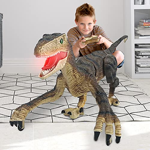 ENERBRIDGE Remote Control Dinosaur Toy for Kids Boys, RC Robot Dinosaur with LED Light and Roaring, 2.4Ghz Simulation VelociraptorToys for Kids 3-12 Years Old Kids