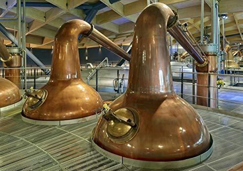 Macallan Double Cask, 12 Años Single Malt Whisky Escoces, 40%, 700ml