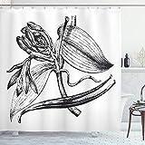 ABAKUHAUS Vanille Duschvorhang, Jahrgang Gravierte Blumen-Kunst, Set inkl.12 Haken aus Stoff Wasserdicht Bakterie & Schimmel Abweichent, 175x220 cm, Charcoal Grau & Weiß