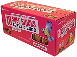 Suet To Go Berry and Bugs Suet Block Wild Bird Treat