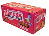 Suet To Go Berry and Bugs Blocks