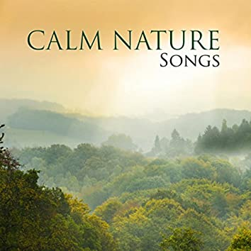 Calm Nature Songs