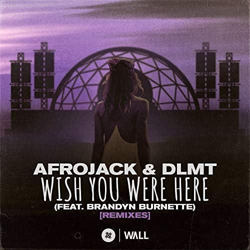 Afrojack & DLMT feat. Brandyn Burnette