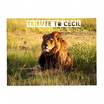 Tribute to Cecil (feat. Daniel Day)