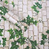 Wollzo Leafy Look Self Adhesive Wallpaper (45 x 300 cm)