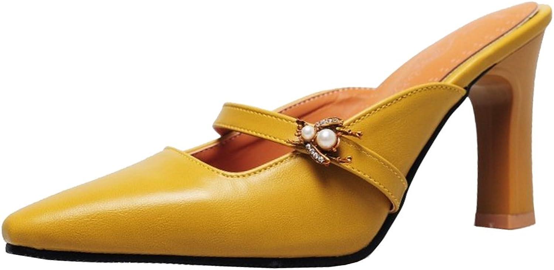 CarziCuzin Women Fashion Heels Mules Sandals