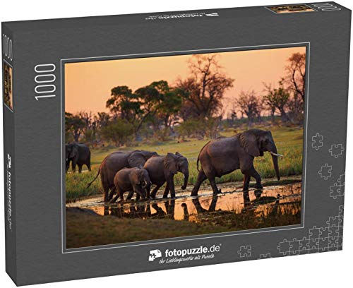 Puzzle 1000 Teile Elefanten im Moremi Nationalpark - Botswana - Klassische Puzzle, 1000 / 200 / 2000 Teile, edle Motiv-Schachtel, Fotopuzzle-Kollektion 'Tiere 2'