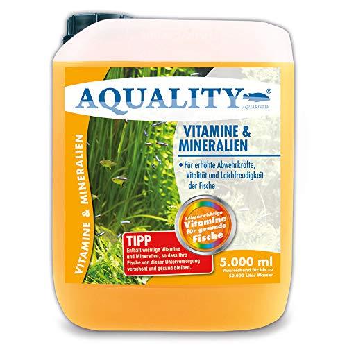 AQUALITY Aquarium Vitamine & Mineralien (Enthält wichtige Fischvitamine für erhöhte Abwehrkräfte, Vitalität und Laichfreudigkeit der Fische im Aquarium), Inhalt:5 Liter