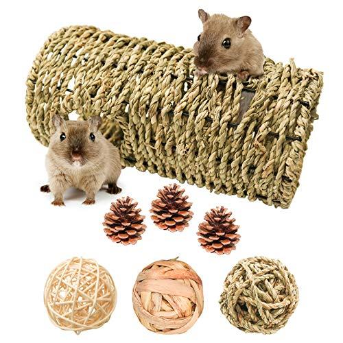 7 Stück Hamster Spielzeug, Handgewebtes Gras Tunnel Spielzeug mit Kauspielzeug Bälle und Kiefernzapfen Natürliche Bälle Leckereien Grasspielzeug für Kleintiere Hamster Rennmäuse Eichhörnchen