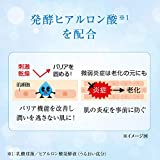 ROHTO HADARABO GOKUJYUN Hyaluronsäure Feuchtigkeitslotion,170 ml. - 6