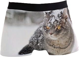 hengpai Brown Tabby Cat Prints Men's Boxer Briefs Soft Underwear Covered Waistband Short Leg