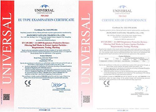 25 FFP2 Masken CE Zertifiziert Atemschutzmaske Einzelverpackung in PE-Beuteln - 6