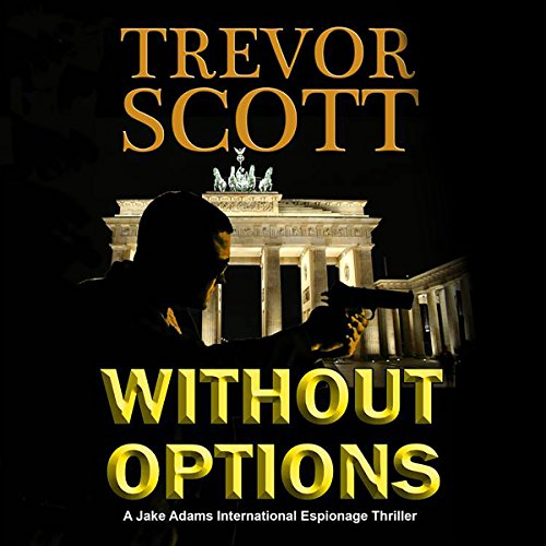 Without Options audiobook cover art