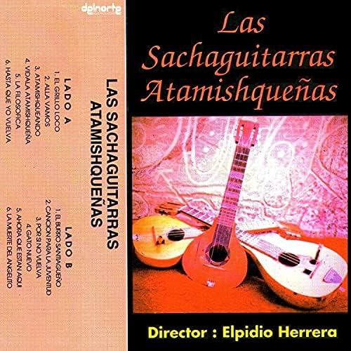 Elpidio Herrera, Manolo Herrera & Las Sachaguitarras Atamishqueñas
