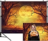 DULUDA 6.5x5ft Halloween Moon Backdrops Photography Background Pumpkin Wood Floor Photo Studio Booth Photographer Props HW32