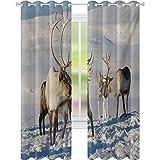 Cortinas opacas para dormitorio, renos, ambiente natural, Tromso Northern Norway Caribou Antler Wildlife, W52 x L108 - Cortinas opacas para ventana, color marrón marfil y azul