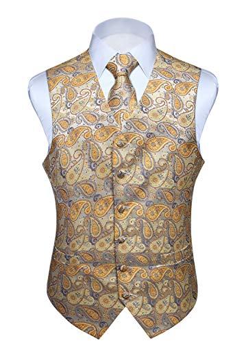 HISDERN Chaleco y Corbata de Jacquard Floral Paisley Clasico para Hombre y Traje de Chaleco Cuadrado de Bolsillo