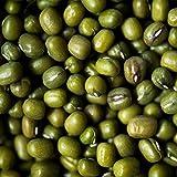11,99€ (11,99€ pro 1kg) 1000g Bio Mungbohnen Plastikfrei in Papiersack | 1 kg - Keimfähig | unbehandelt | für Mungsprossen asiatische Küche Mung Bohnen - plastikfrei verpackt| STAYUNG DE-ÖKO-070