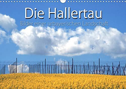 Hallertau (Wandkalender 2021 DIN A3 quer)